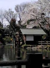 鍋島松濤公園.jpg